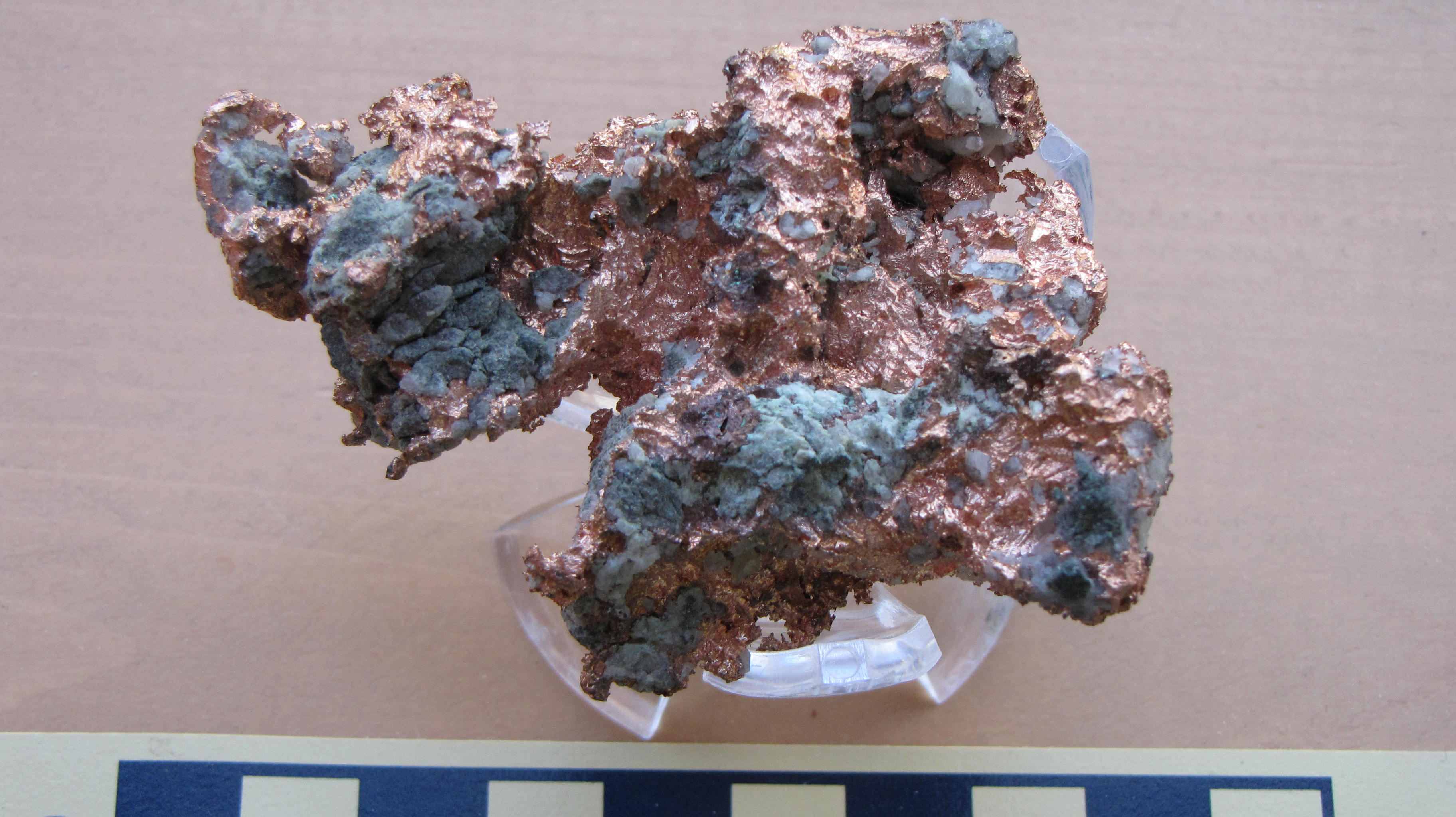 Native Copper - scale in cm