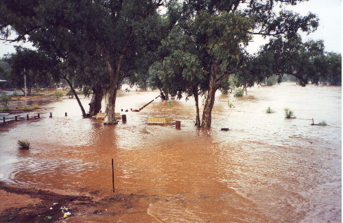 A riverside park in Alice Springs, 21 April 2000 (photo by A. Jefferson)