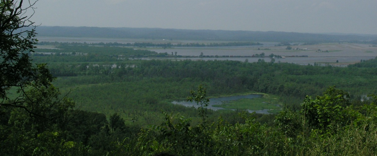 Foreground: An abandoned channel remains as a wetland. Background: Levees and flooding along the Big Muddy River.