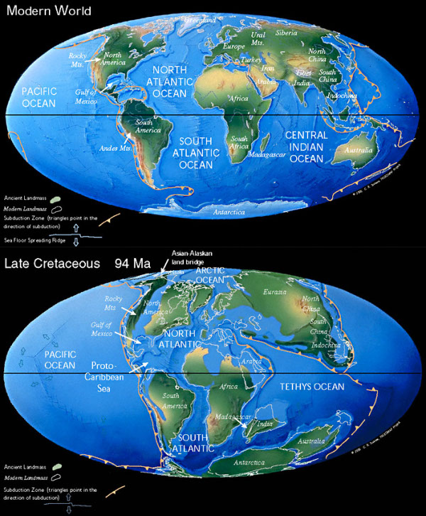 Does plate tectonics control magnetic reversals?   Highly