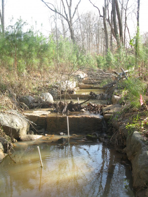 Stream restoration in BD3