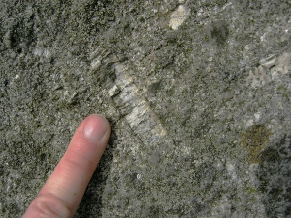 Plagioclase in granite, Dartmoor