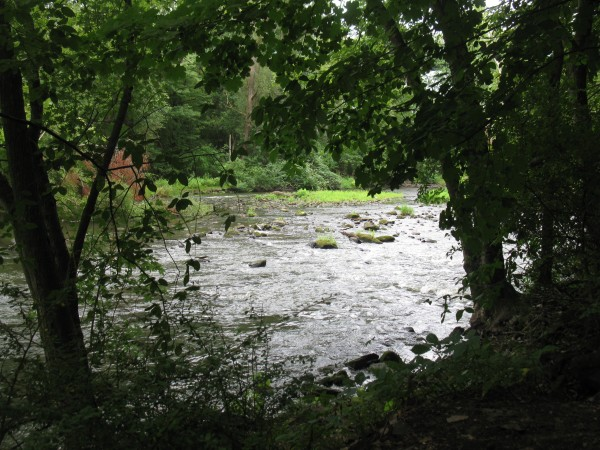 Cuyahoga River in Kent. Photo by A. Jefferson, August 2012.