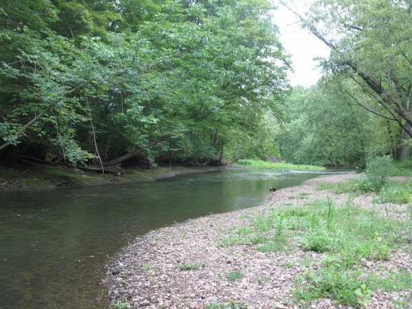 Gravel bar on Cuyahoga River