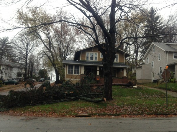 Large tree fallen in front of house.