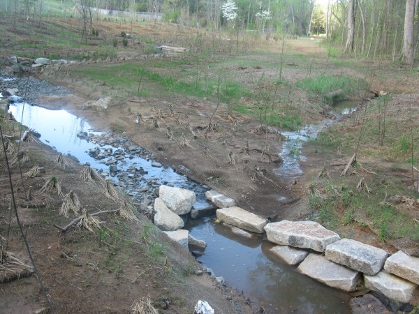 Brand new stream restoration in Charlotte
