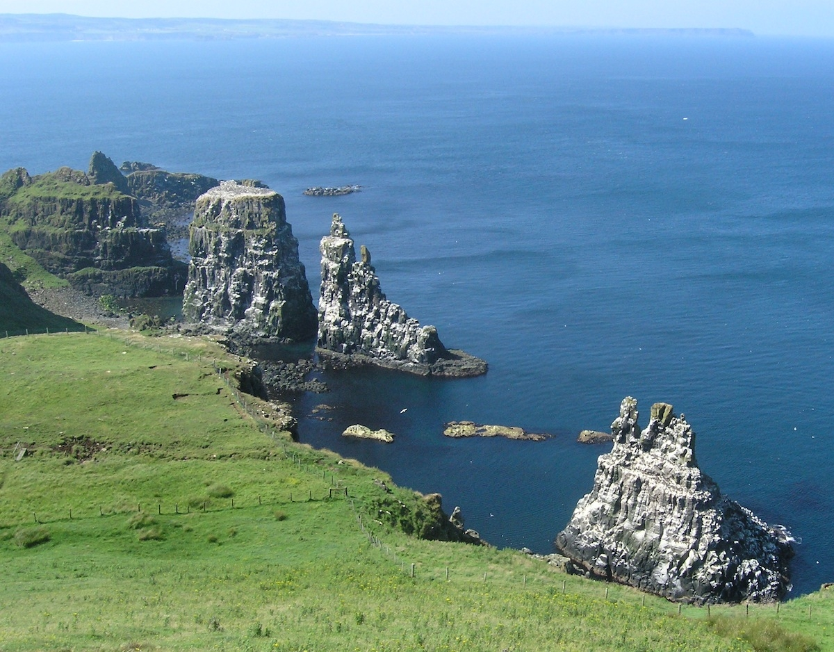 Seastacks on the west side of Rathlin Ireland - basalt with a veneer of guano. Photo: Christ Rowan, 2013.
