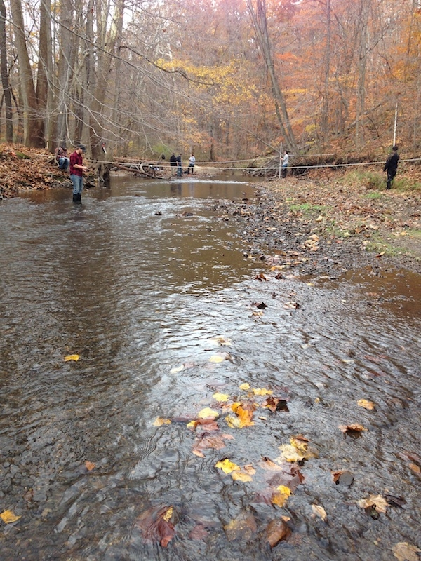 fall colors and students in and around a gravel bed stream