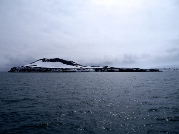 Penguin Island, South Shetland Islands