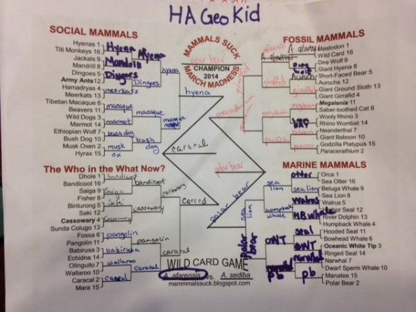 GeoKid's bracket. Polar Bear wins it all.