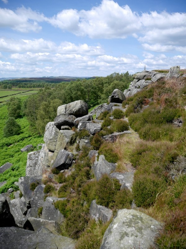Birchen Edge near Baslow, Peak District, UK. Photo: Chris Rowan, 2014.