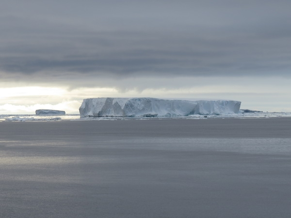 Tabular iceberg in the Weddell Sea, 22 December 2013. Photo by A. Jefferson