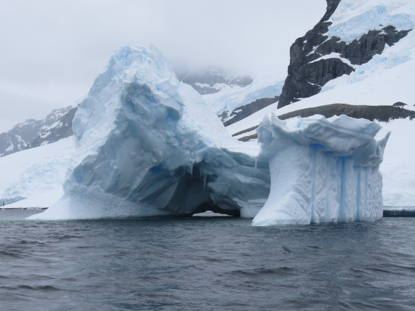 One of many spectacular bergy bigs just offshore of Cuverville Island. Photo by A. Jefferson, December 2013.