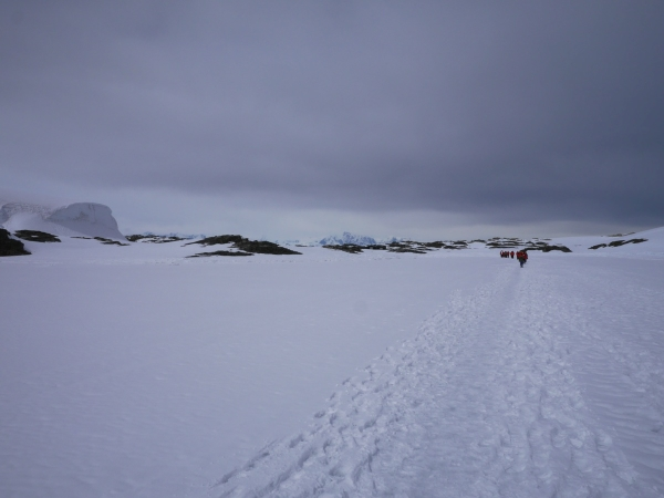 Walking across the sea ice
