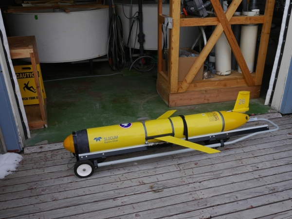 Autonomous glider used for collecting data from underneath marine ice.