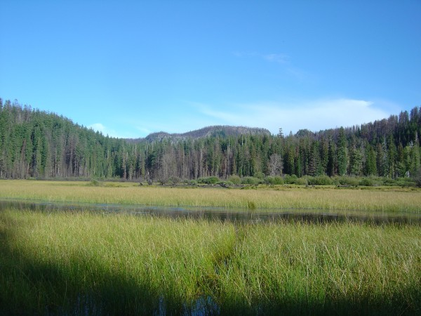 Lost Lake, looking northeast, as it appeared in September 2004. Photo by A. Jefferson, all rights reserved.