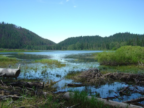 Lost Lake, from the northeast, as it appeared in June 2004. Photo by A. Jefferson, all rights reserved.