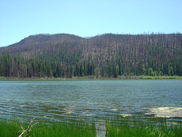 Lost Lake,somewhat fuller in June 2004. Photo by A. Jefferson, all rights reserved.