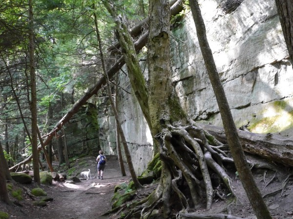 Ritchie Ledges in Cuyahoga Valley National Park
