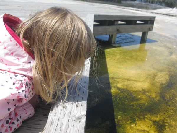 GeoKid examines hot spring algae