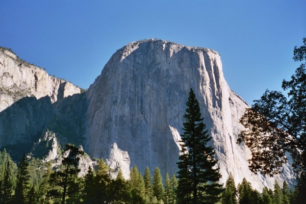 El Capitan, with conifers in foregound.