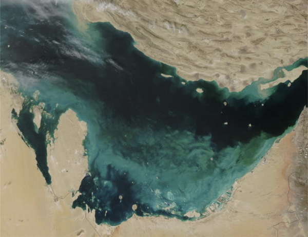 The Persian Gulf, viewed from space. On the southern edge, the dark blue water is turned milky by clouds of newly crystallised calcium carbonate suspended in the water column.