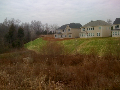 Stormwater wetland, sodded slope, and new houses