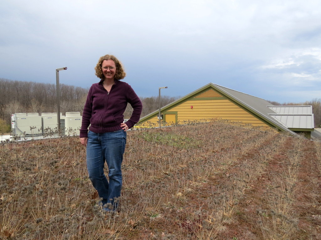 Anne on a roof, covered with brown vegetation, dramatic sky