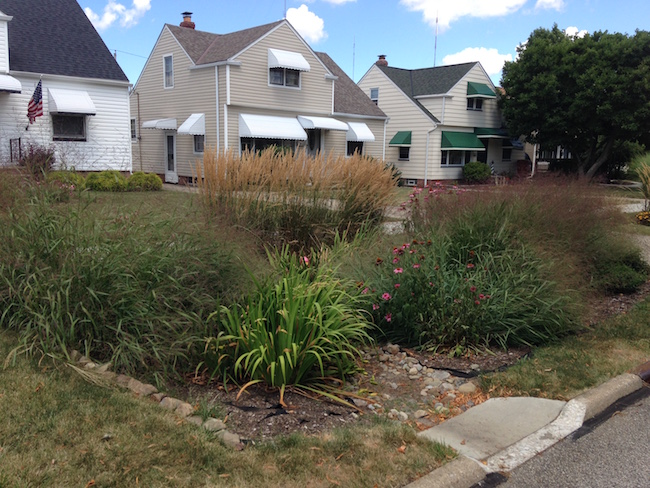 A bioretention cell from our study. Photo by A. Jefferson, August 2015.