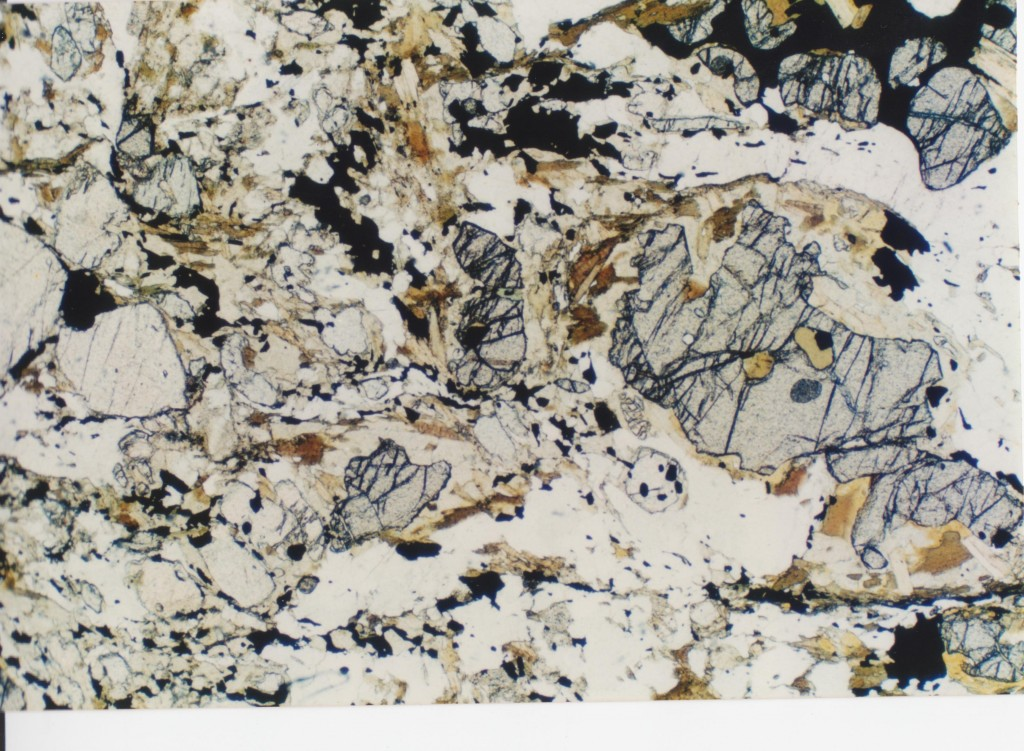 Thin section of granulite facies rock
