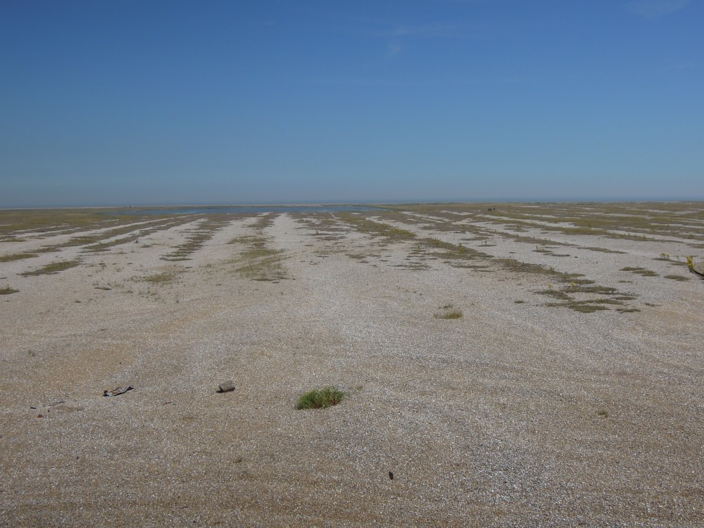 Shingle ridges Orford Ness