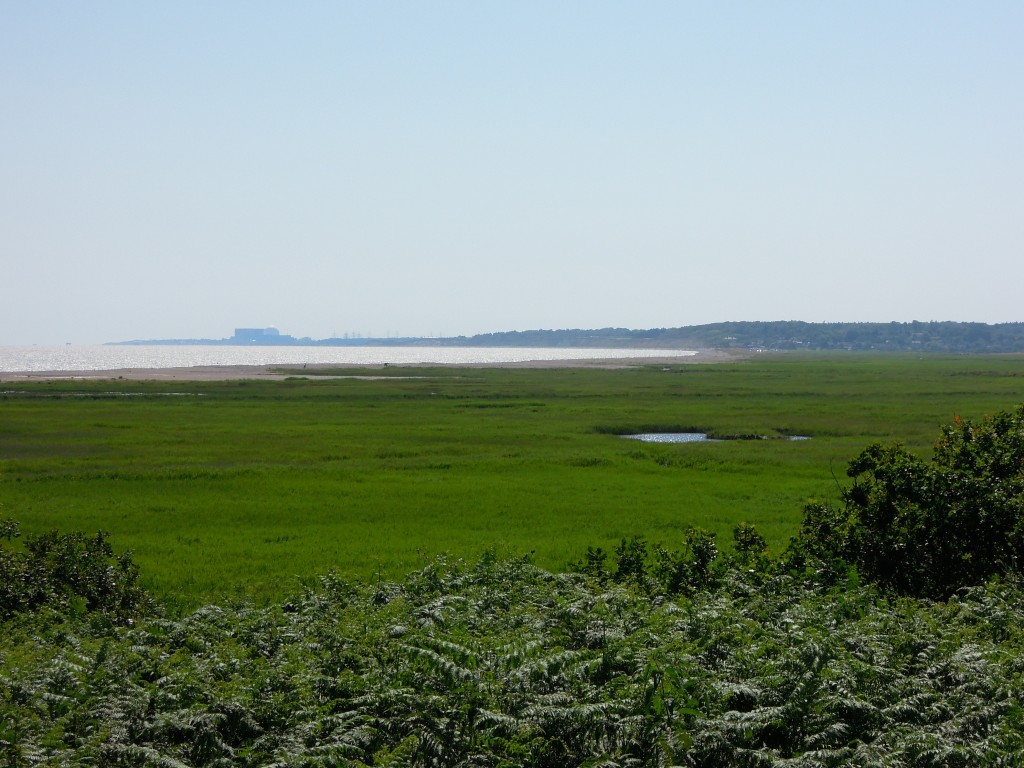 view of marsh looking towards Dunwich