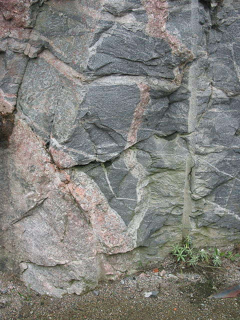 Greenstone Xenoliths in Archean Gneiss, near Sand River, Ontario