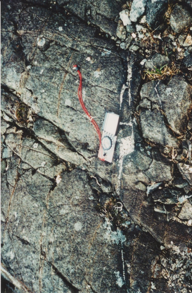 En-echelon fracture with granite magma within gabbro intrusion. Note green rim where hydration of pyroxene creates amphibole