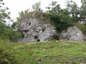 Massive 'reef' limestone, Manifold valley