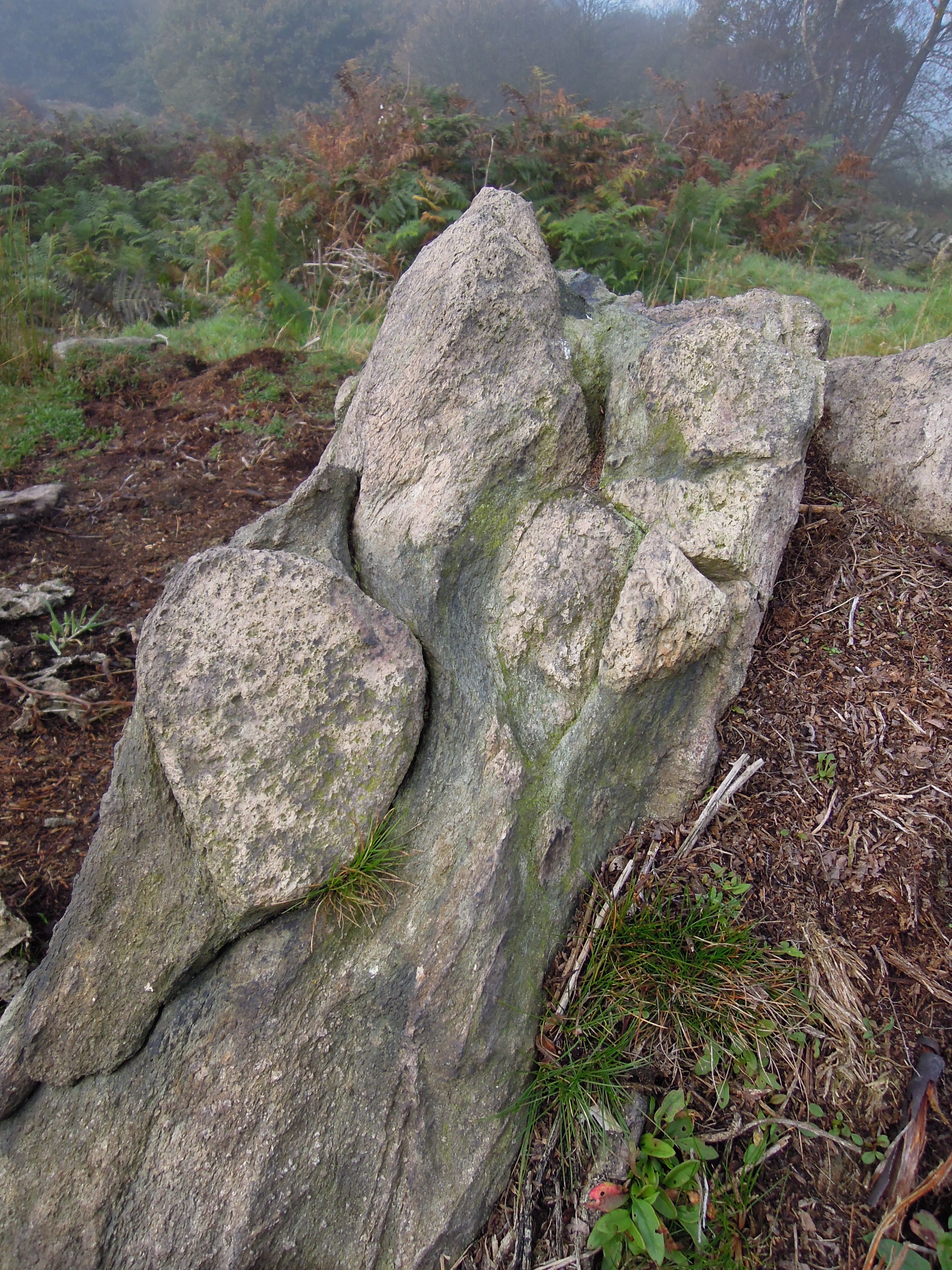 Charnwood forest – misty traces of ancient landscapes ...