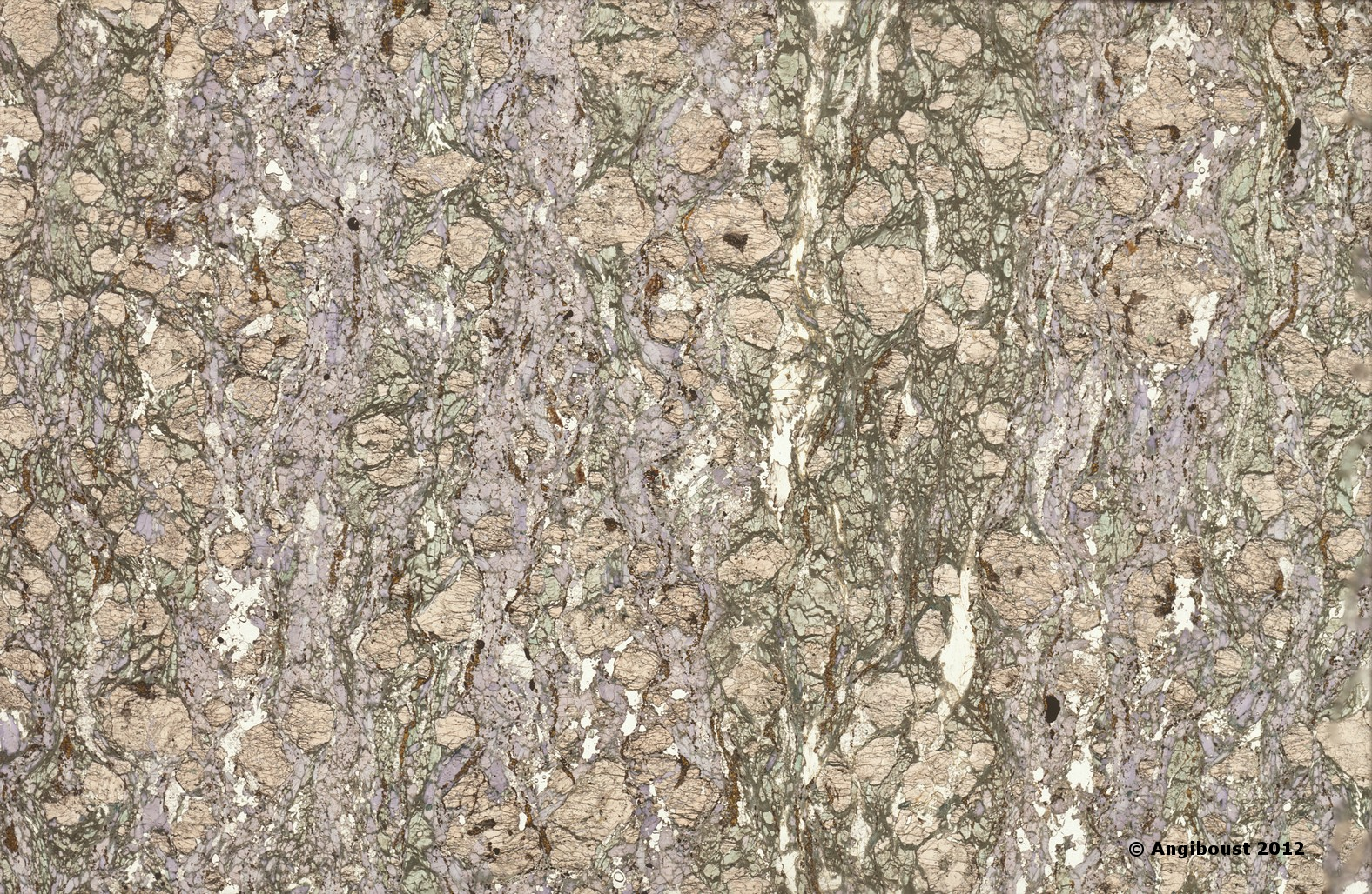 Eclogite thin section