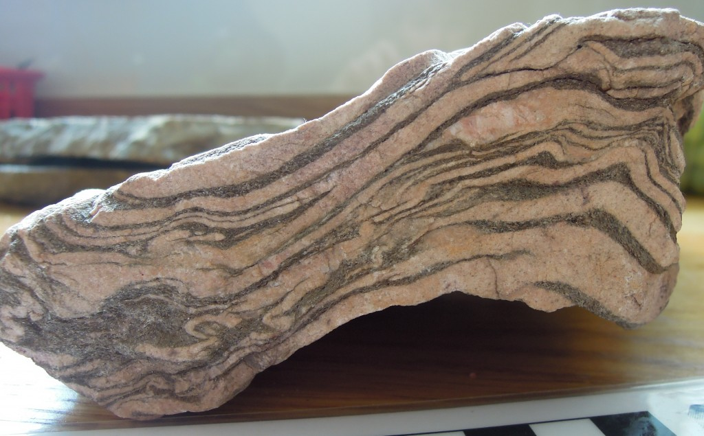 Glencoe Quartzite, Appin Group