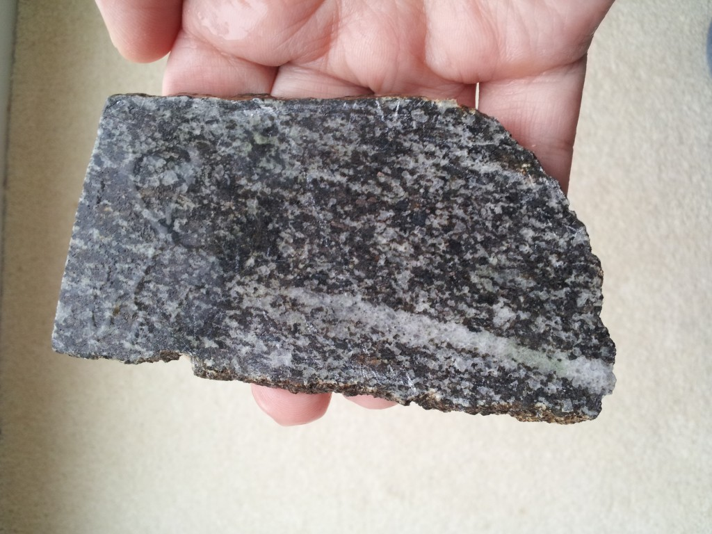 Gabbro in my hand