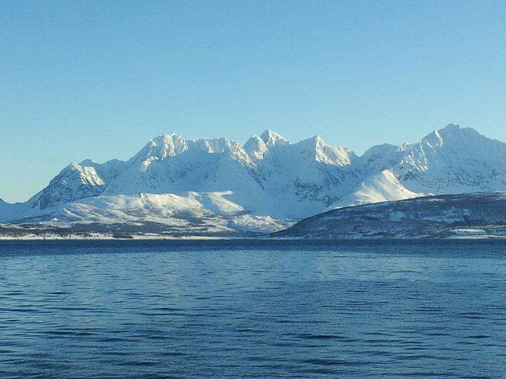 Lyngen Alps from Oldervik