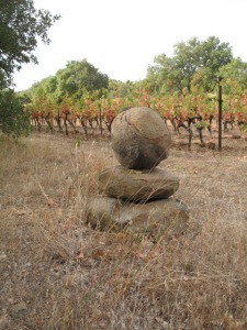 Basalt in a vineyard