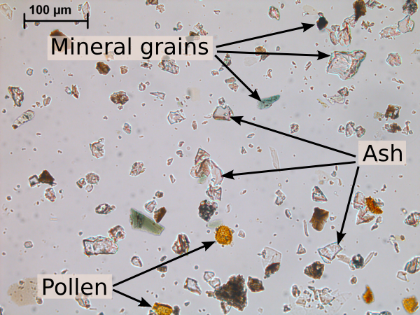 Ash grains in UK rainwater
