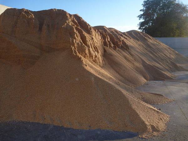 A closer view of the wheat pile